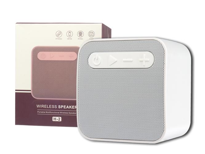 SPEAKER H-2