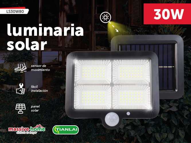 LUMINARIA SOLAR LS30W80